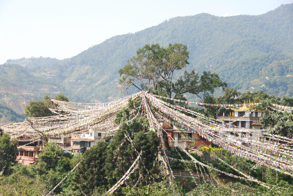 Kathmandu valley sightseeing tour (10)