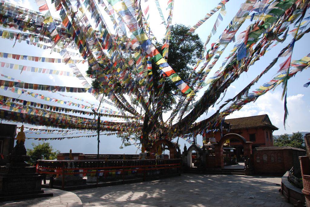Kathmandu valley sightseeing tour (14)