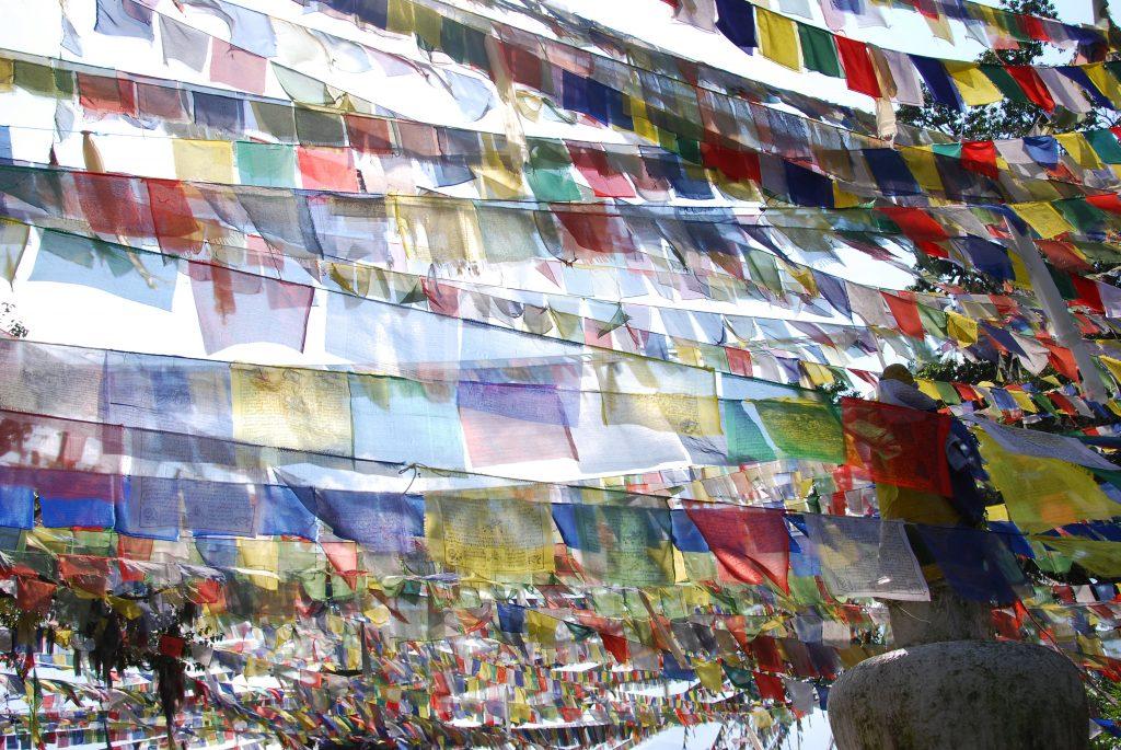 Kathmandu valley sightseeing tour (15)