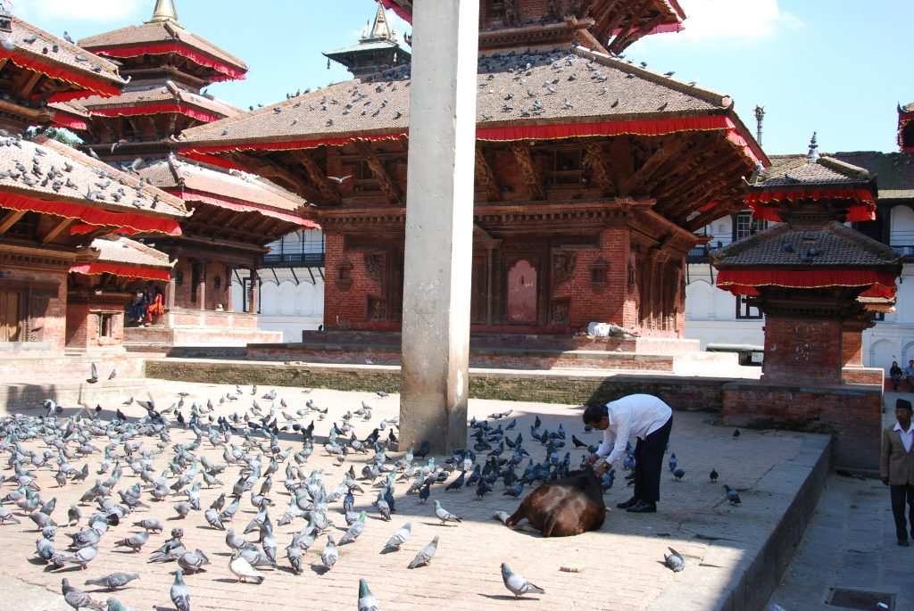 Kathmandu valley sightseeing tour (22)