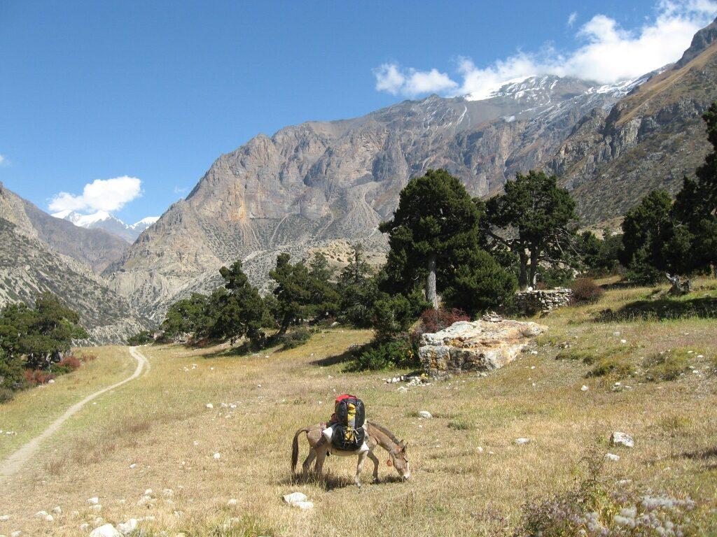 Mera peak (5)