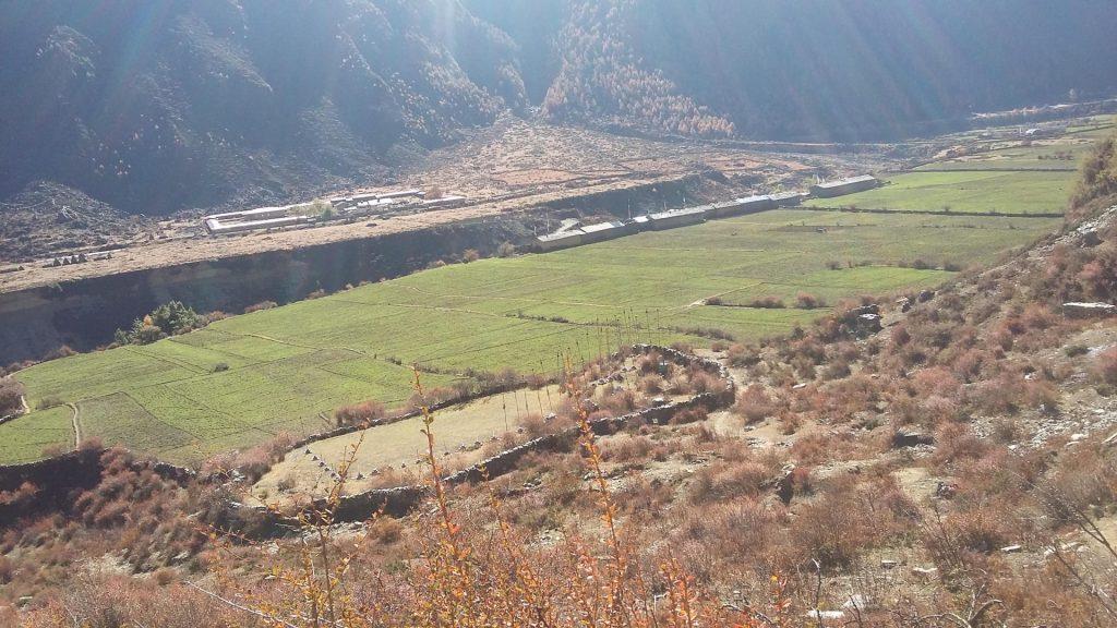 Manaslu trek combined tsum valley trek 9