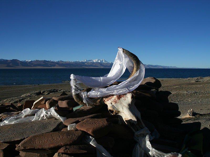 Mount kailash manasarovar tour 1
