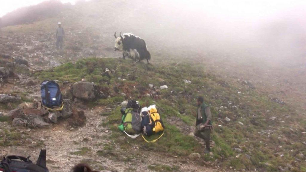 Naya kanga peak climbing 19