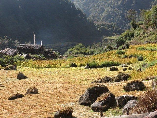 Tsum valley trekking 13