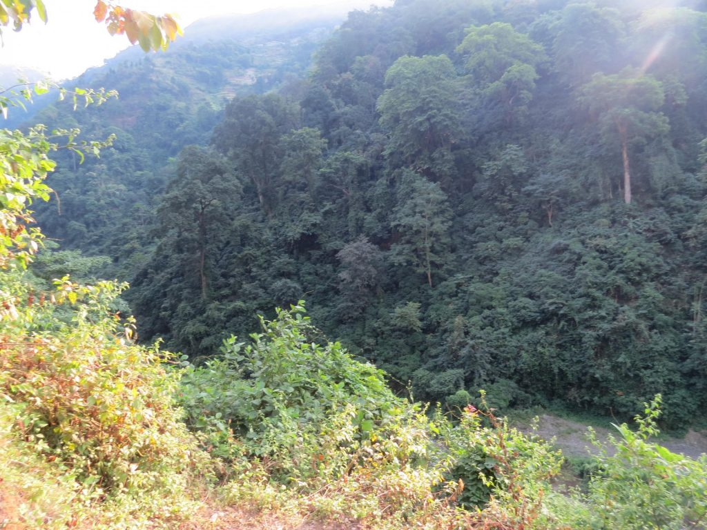 Upper dhangadi trek 3