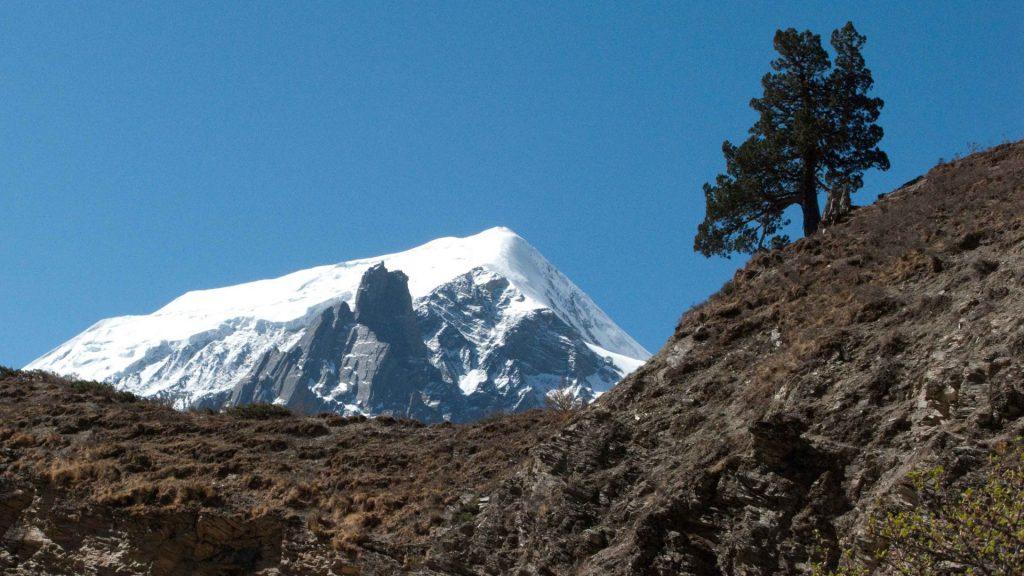 Upper dolpa trek 13