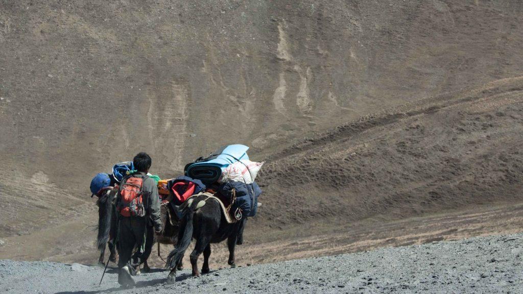 Upper dolpa trek 26