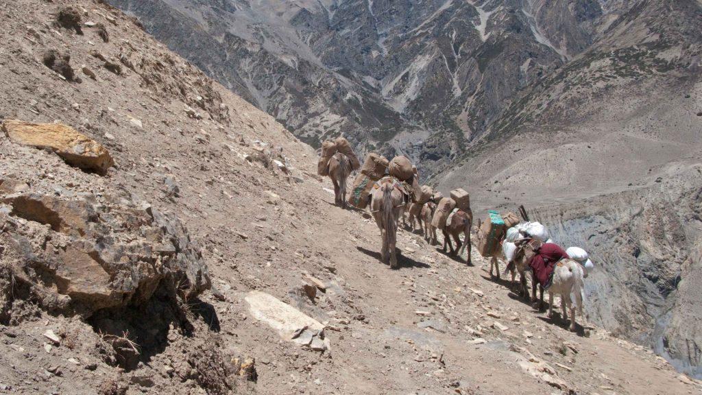 Upper dolpa trek 27
