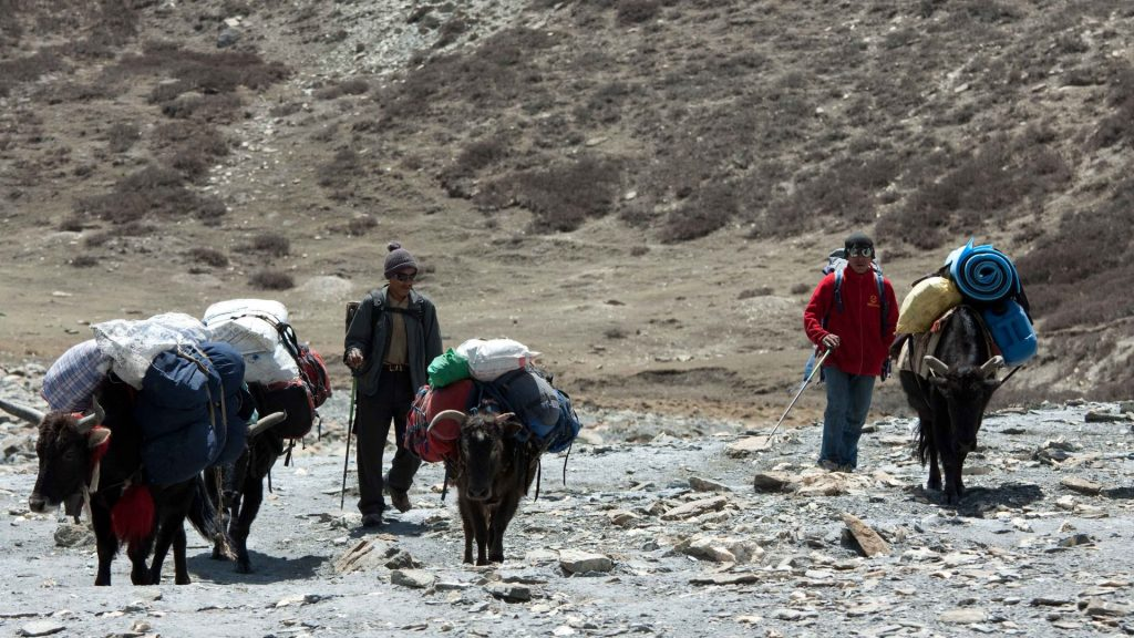 Upper dolpo extensive trek 18
