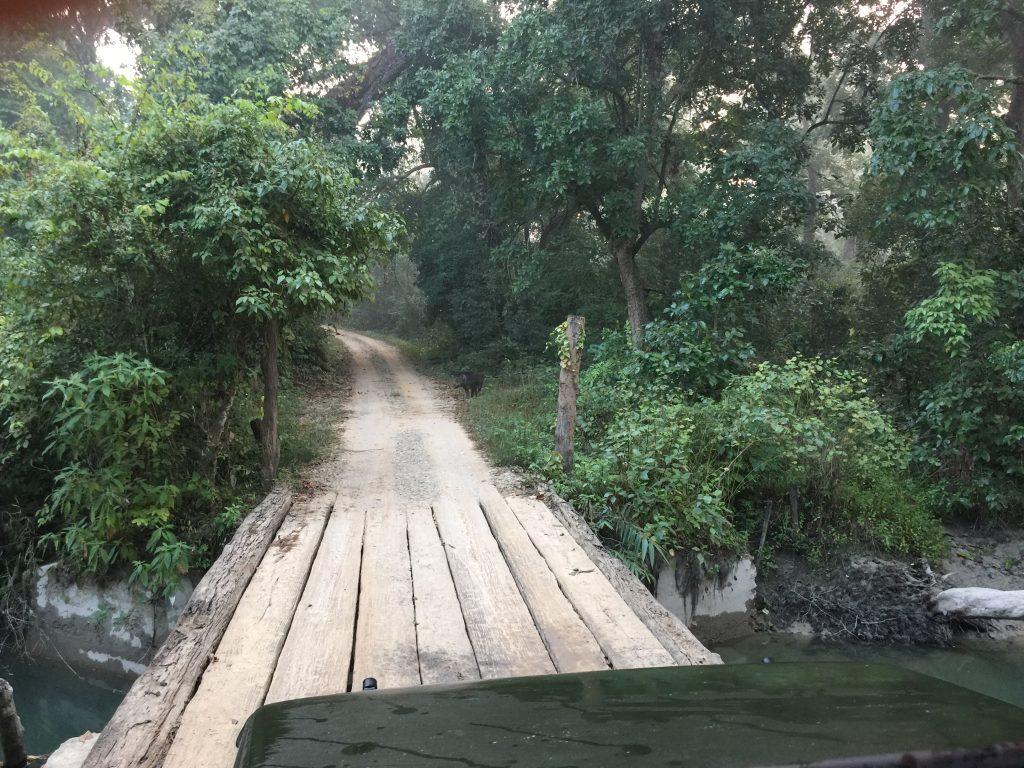 Bardia national park tour (10)