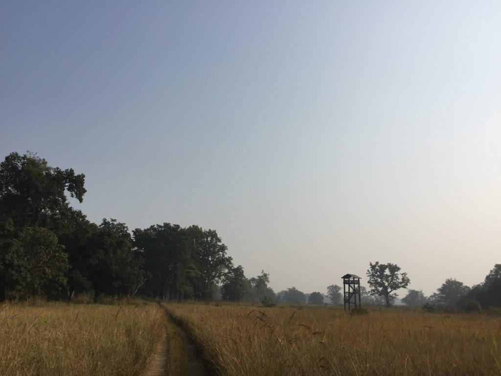 Bardia national park tour (20)