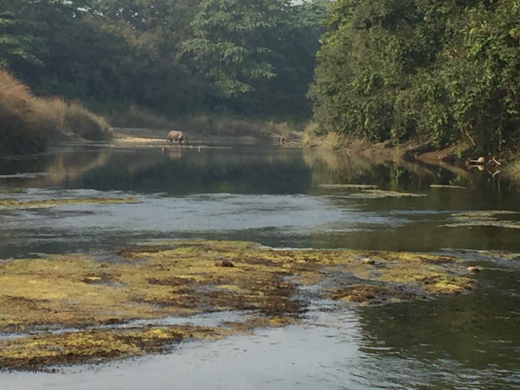Bardia national park tour (21)