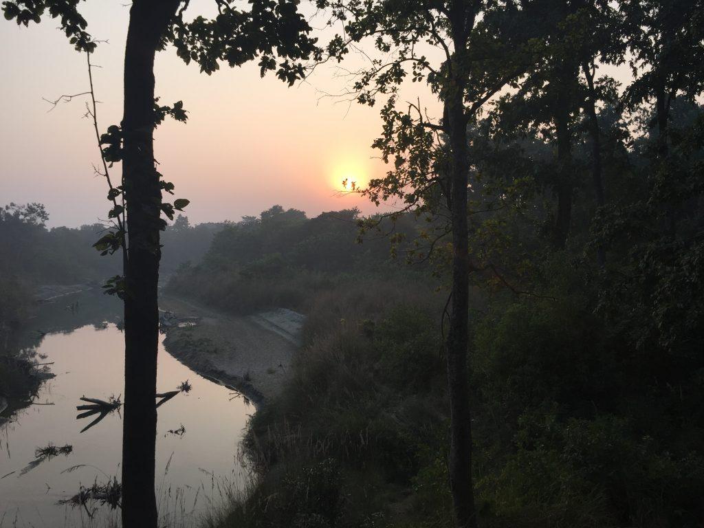 Bardia national park tour (30)