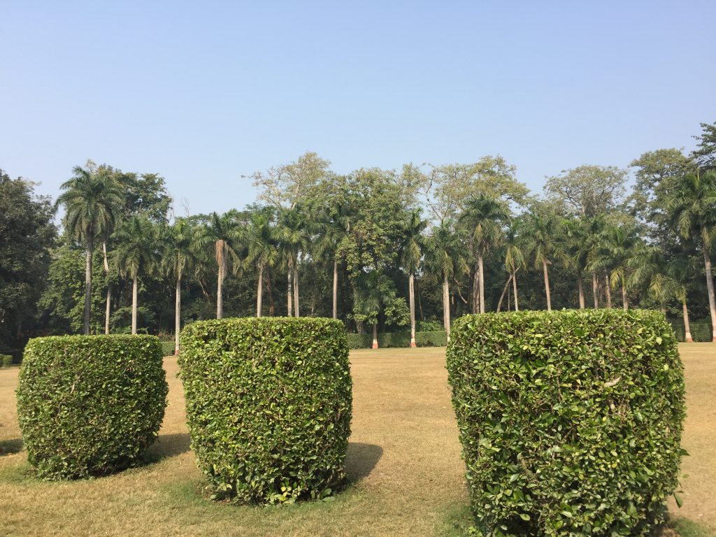 Bardia national park tour (41)