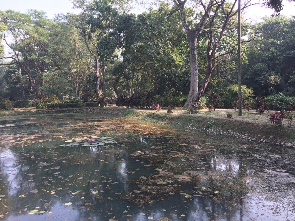 Bardia national park tour (44)