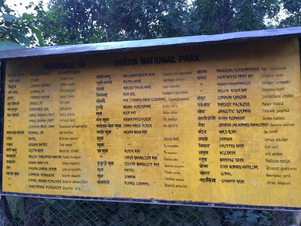 Bardia national park tour (9)