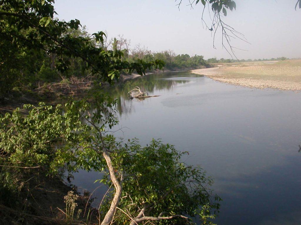 Bardiya national park (58)