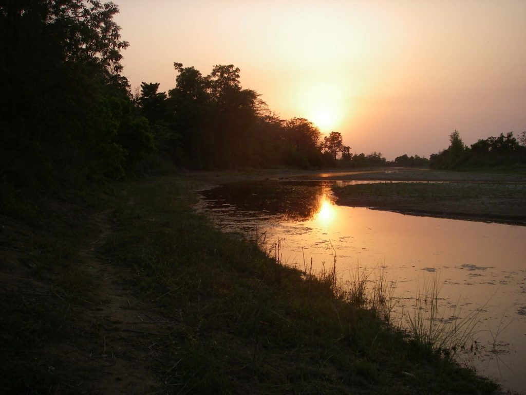Bardiya national park (8)