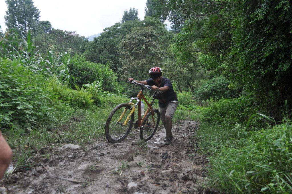 Mountain biking (29)
