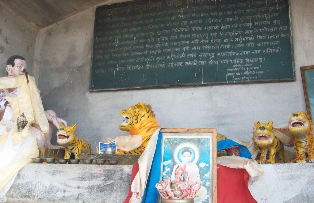Namo buddha hiking (8)