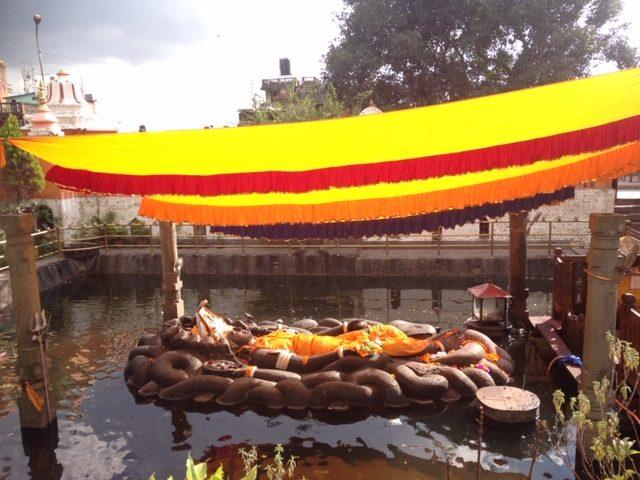 Shivapuri hike (2)