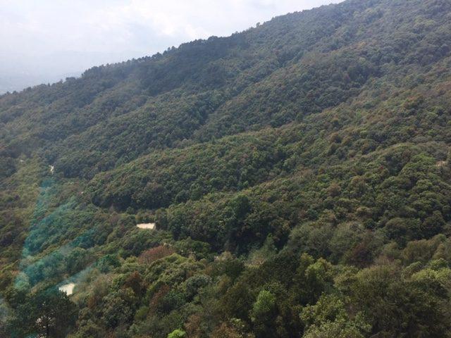 Shivapuri hike (3)