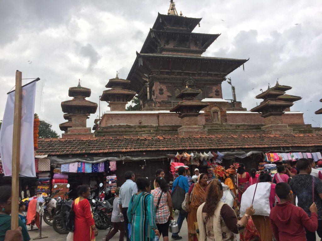 Gai jatra festival tour (23)