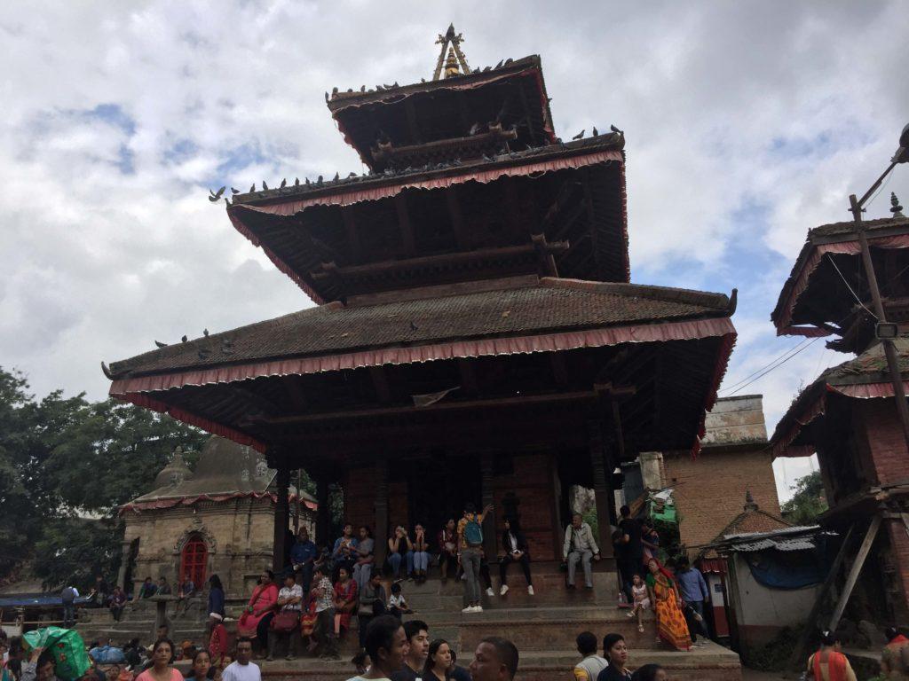 Gai jatra festival tour (28)