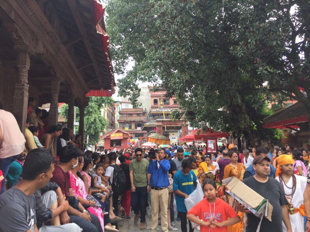 Gai jatra festival tour (32)