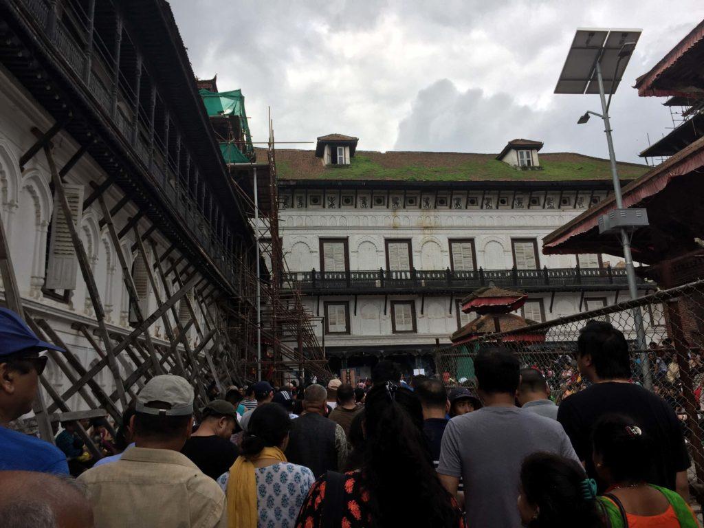 Gai jatra festival tour (35)
