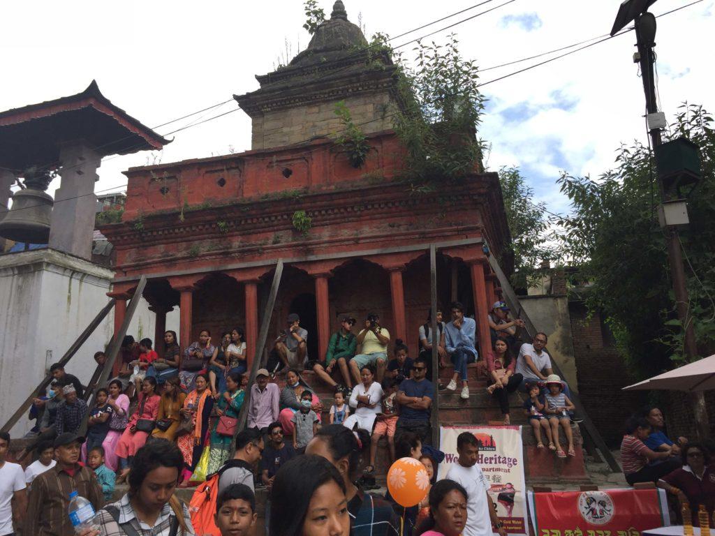 Gai jatra festival tour (45)
