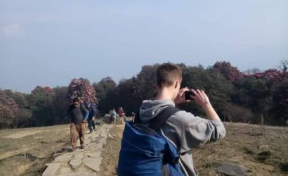Rhododendron trek annapurna region (8)