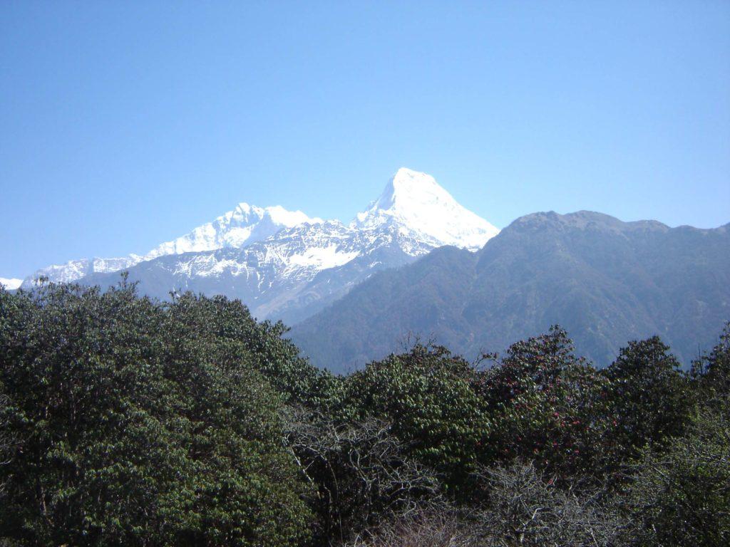 Ghorepani poon hill ghandruk trek (13)