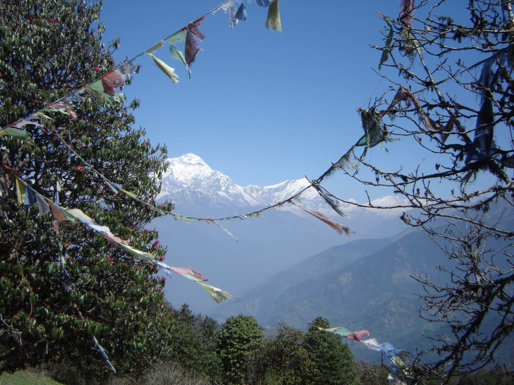 Ghorepani poon hill ghandruk trek (15)