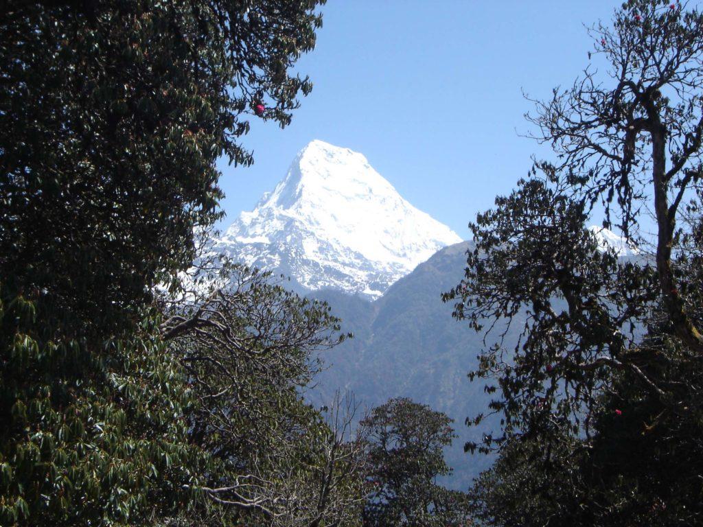 Ghorepani poon hill ghandruk trek (17)