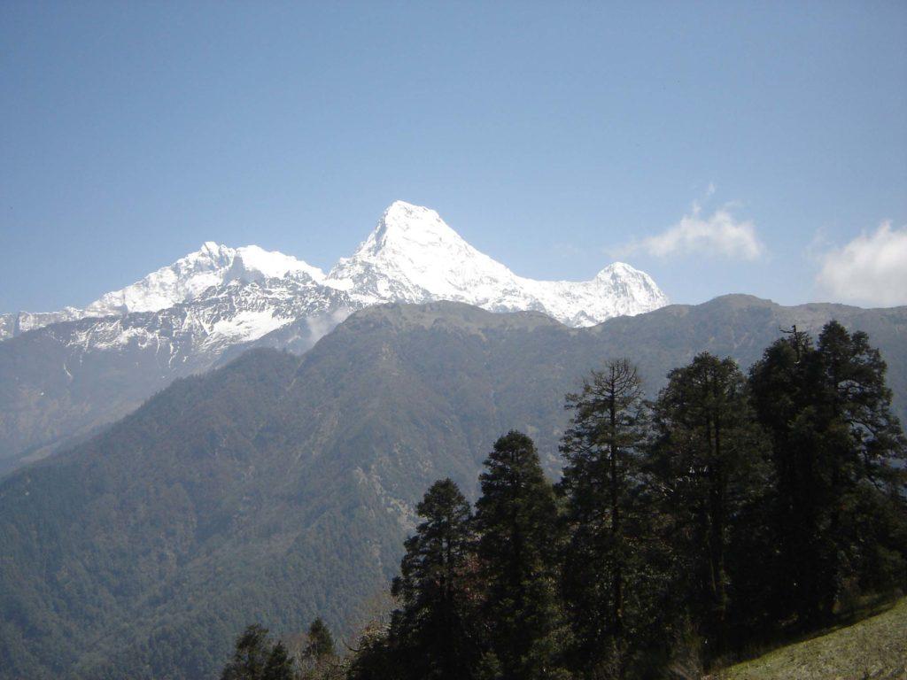Ghorepani poon hill ghandruk trek (20)