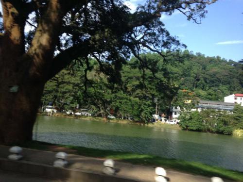Sri Lanka Business Promotion Tour (10)