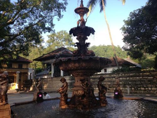 Sri Lanka Business Promotion Tour (17)