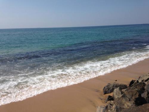 Sri Lanka Business Promotion Tour (2)