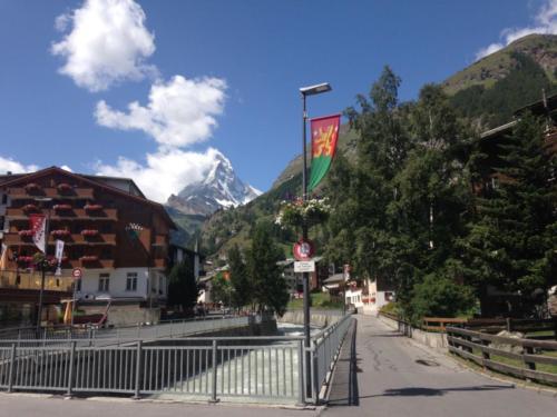 Switzerland Visit (15)